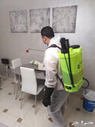 مكافحة الصراصير رش مبيدات للبق